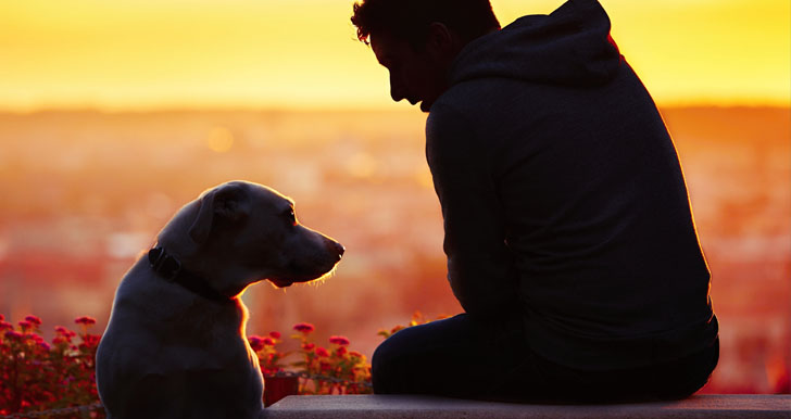Loyal And Friendship With Dog